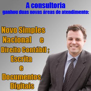 novas areas consultoria