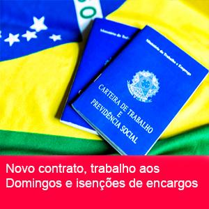 CONTRATO DE TRABALHO VERDE E AMARELO2